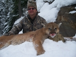 Mountain Lion Russell Pond Outfitters 2010