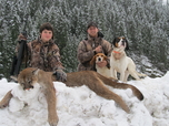 idaho mountain lion youth guded hunt russell pond outfitters